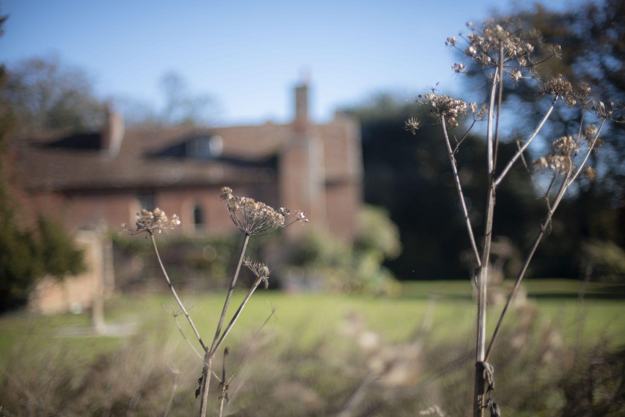 Pittleworth Manor